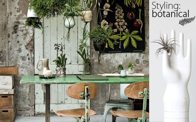 Styling ideas: botanical