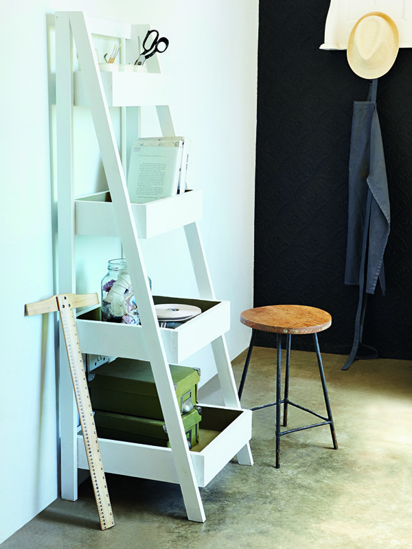 storage ladder shelf