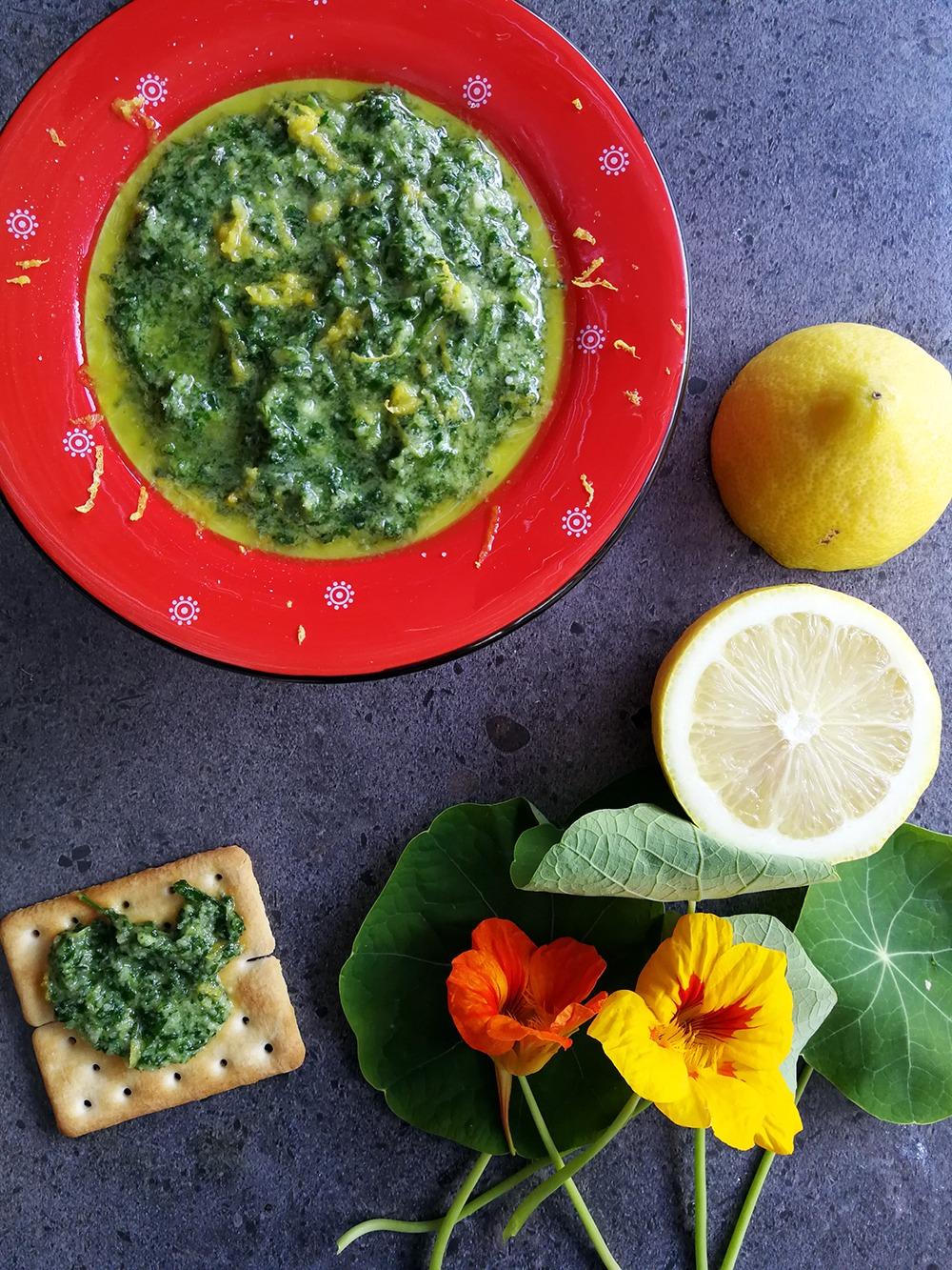 Go Forage and make some Delicious Nasturtium Pesto